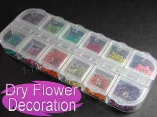 12Colour 3D DRY FLOWER Nail Art Nature Decorations UV