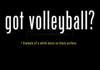 got volleyball? Vinyl wall art truck car decal sticker