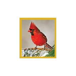 New Magnetic Bookmark Cardinal Winter High Quality Modern Design