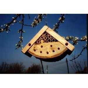 New Wildlife World Bug Box High Quality Modern Design