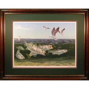 Frenzy   Speckled Trout, Seagulls and Shrimp fish art