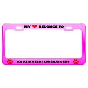 An Asian Semi Longhair Cat Pet Pink Metal License Plate