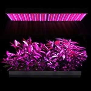 Grass Herb Flower Growing Grow LED Light Lamp Panel: Home Improvement