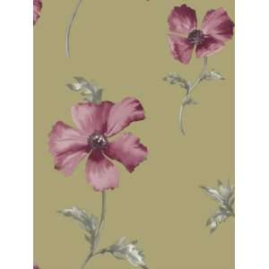 Wallpaper Shand Kydd III Oxford SK167651: Home Improvement