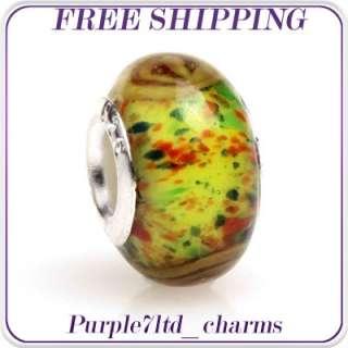 1pc lampwork glass silver core beads charm fit European bracelet