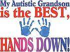 Adult T shirt Autism Awareness *Autistic* Hands Down