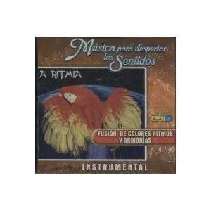 De Colores Ritmo Y Armonia MUSICA PARA DESPERTAR LOS SENTIDOS Music