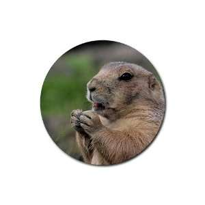 Prairie Dog Round Rubber Coaster set 4 pack Great Gift Idea