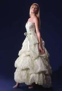 JESSICA McCLINTOCK Green Organza Gown Dress NWT Size 4