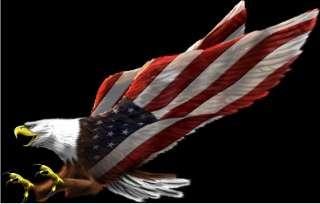 Screamin Eagle cornhole game decal set