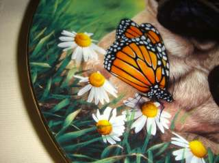 Simon Mendez Pugs Butterfly Flowers PUG EYED Plate Cute