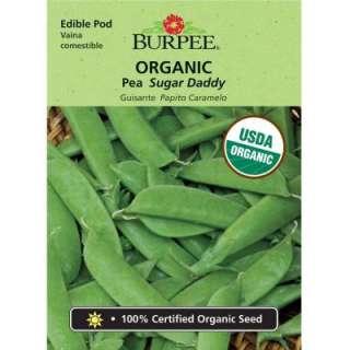 Burpee Pea Organic Sugar Daddy Seed 60689