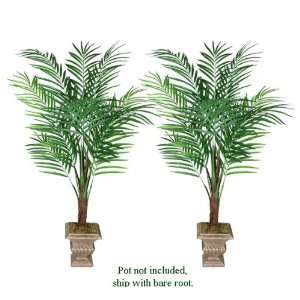 TWO 6 King Areca Artificial Tropical Palm Trees: Home