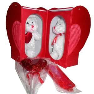 New   Valentines Day 2 Pack Bear in Heart Shaped Box Case Pack 16 by